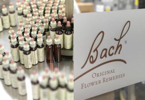 Les Fleurs de Bach pour l'équilibre émotionnel